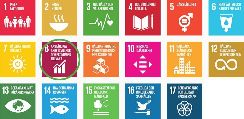 FNs globala mål för hållbar utveckling med nr 8 markerad.